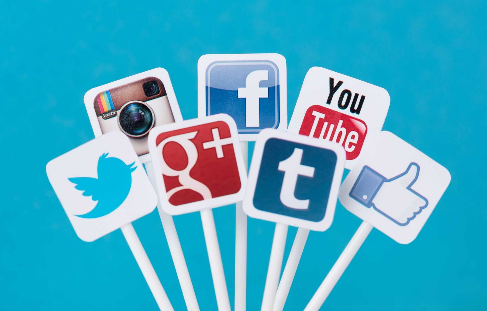 Social Media Management: These are some of our services